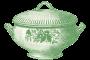 grote serveerschaal groen